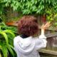 Fairy Door - Rotorua Kindergarten making goodbye easier