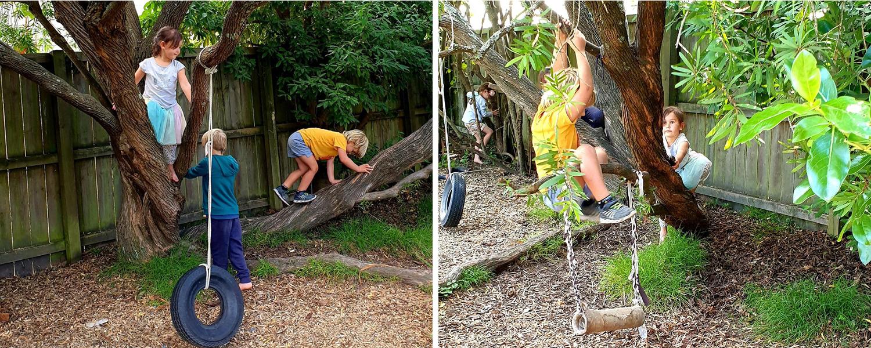 Tree climbing at kindy